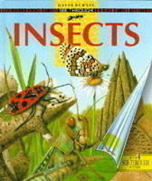 See Through Insects