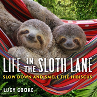 Life In The Sloth Lane Slow Down and Smell the Hibiscus