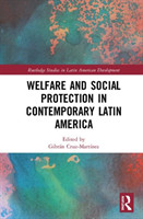 Welfare and Social Protection in Contemporary Latin America