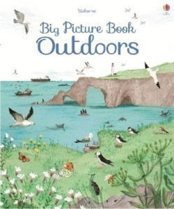 Big Picture Book of Outdoors