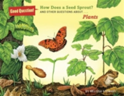 How Does a Seed Sprout? And Other Questions About Plants