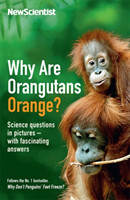 Why Are Orangutans Orange? Science questions in pictures -- with fascinating answers