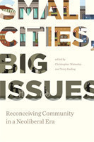 Small Cities, Big Issues Reconceiving Community in Neoliberal Era