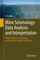 Mine Seismology: Data Analysis and Interpretation Palabora Mine Caving Process as Revealed by Induced Seismicity
