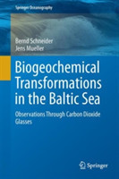 Biogeochemical Transformations in the Baltic Sea Observations Through Carbon Dioxide Glasses
