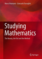 Studying Mathematics The Beauty, the Toil and the Method