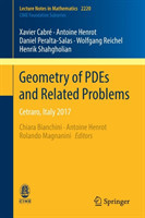 Geometry of PDEs and Related Problems Cetraro, Italy 2017
