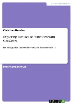 Exploring Families of Functions with GeoGebra