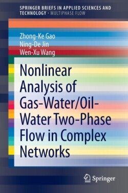 Nonlinear Analysis of Gas-Water/Oil-Water Two-Phase Flow in Complex Networks