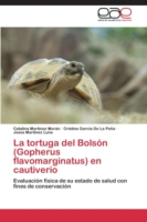 Tortuga del Bolson (Gopherus Flavomarginatus) En Cautiverio