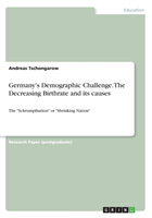 Germany's Demographic Challenge. The Decreasing Birthrate and its causes