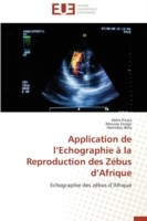 Application de L Echographie   La Reproduction Des Z bus D Afrique