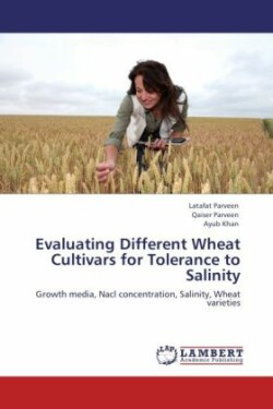 Evaluating Different Wheat Cultivars for Tolerance to Salinity