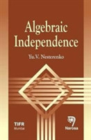Algebraic Independence