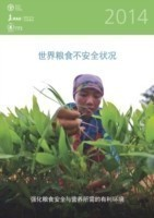 The State of Food Insecurity in the World 2014 Strengthening the Enabling Environment for Food Security and Nutrition (Chinese)