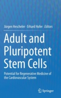 Adult and Pluripotent Stem Cells Potential for Regenerative Medicine of the Cardiovascular System